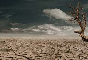 desert-drought-dehydrated-clay-soil-60013